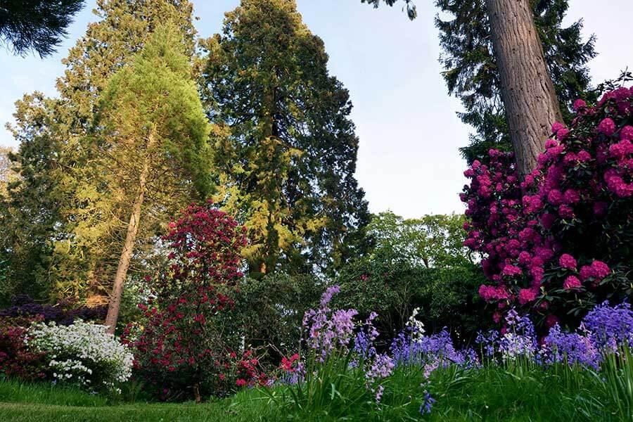 Grove at Brockwood Park